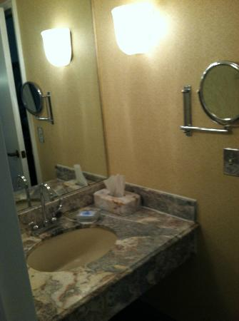 Wyndham Baltimore Mt. Vernon Hotel: Vanity and sink. Magnified mirror