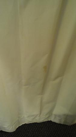 Holiday Inn Greenville I-85 Augusta Road: Stained curtain