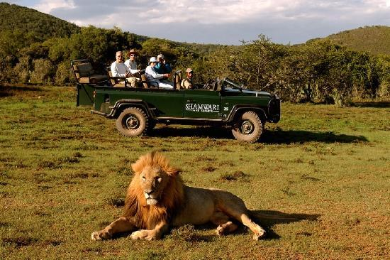 ‪Shamwari Game Reserve Lodges‬