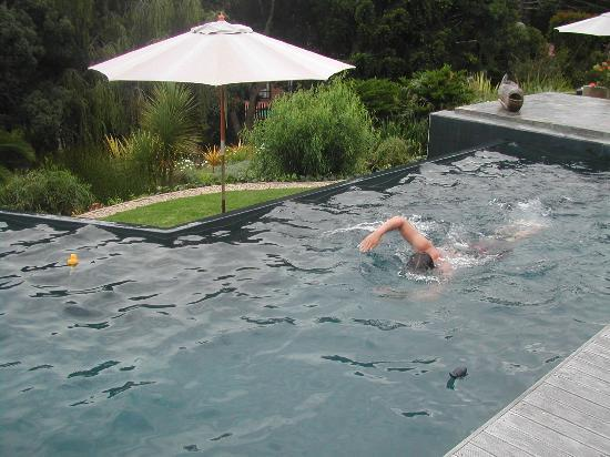 Cambalala: Pool small but just big enough to manage mini-laps