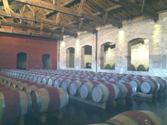 Villa St. Simon: barrel room in the Medoc region