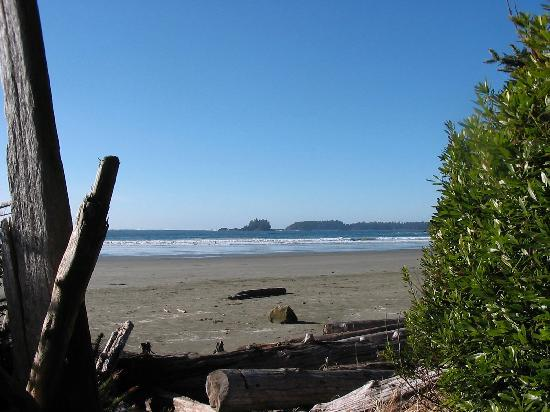 Tofino Beach Homes