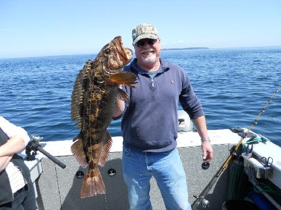 Lingcod fishing san juan islands for Fishing san juan islands