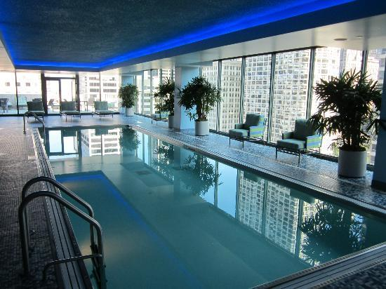Roof top lap pool picture of palomar chicago a kimpton hotel chicago tripadvisor for Hotel in chicago with swimming pool in room