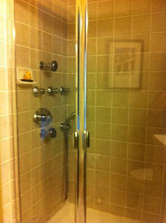 Jefferson Clinton Hotel: Euro Room Shower