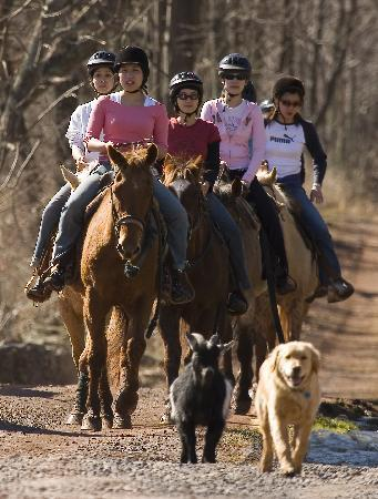 Stone Tavern Farm: Ride horses on our 400 acres