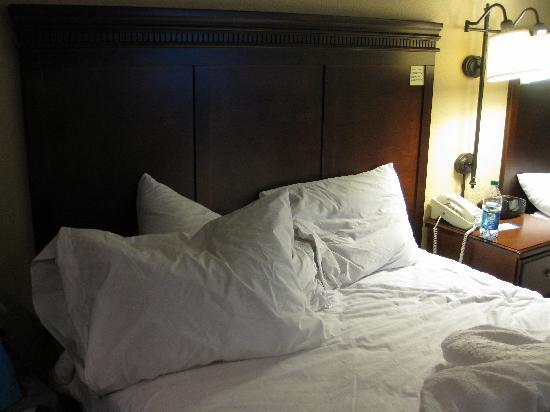 Hampton Inn Somerset: nice comfy bed