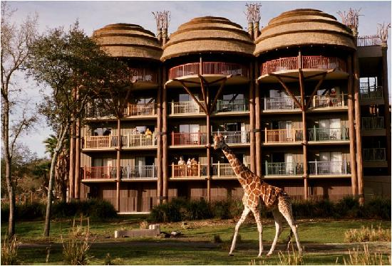 Disney's Animal Kingdom Lodge & Villas - Jambo House Photo