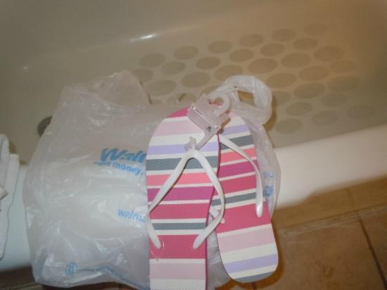 Holiday Inn Hotel & Suites Springfield - I-44: bought new shower shoes just in case