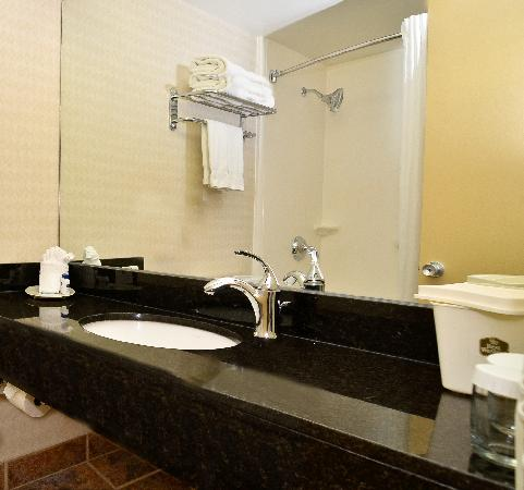 BEST WESTERN PLUS Charter House Hotel Downtown Winnipeg: Guest Washroom