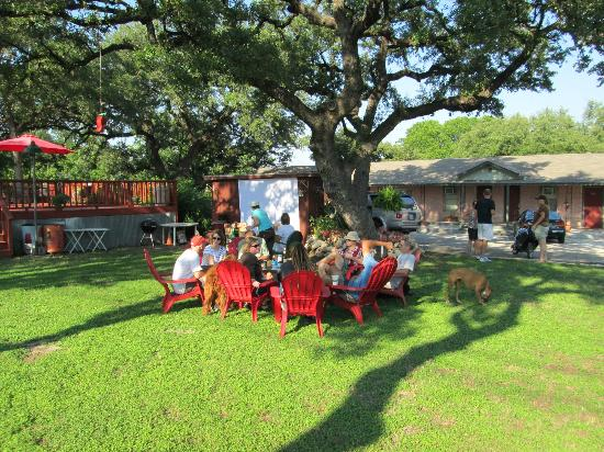 Blanco County Inn: Relaxing under the oaks