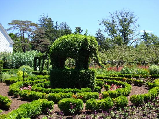 Making The Lion Picture Of Green Animals Topiary Gardens Portsmouth Tripadvisor