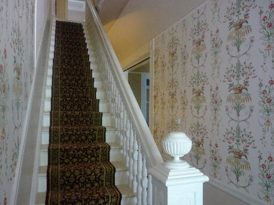 Five Continents Bed and Breakfast: beautiful wallpaper