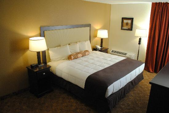 Village Inn Event Center: Executive King Room Non Smoking w/sleeper sofa