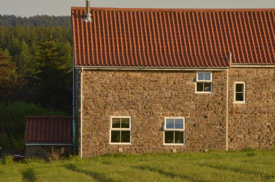 Cropton Forest Lodge and Cottages: Meadows Edge Cottage from the back