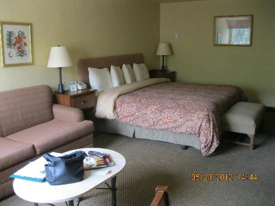Evergreen Lodge: King bed