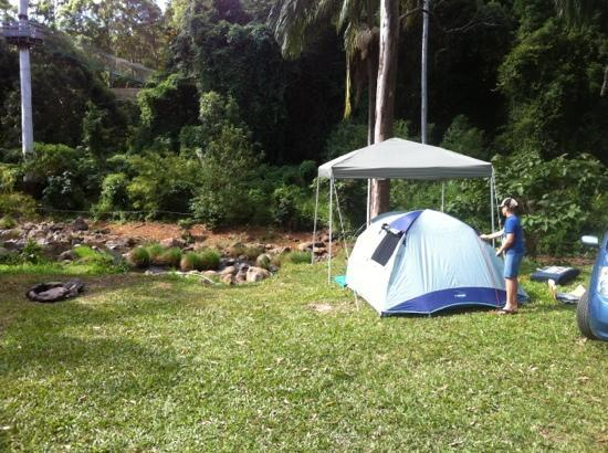 Tamborine, Australia: creek side camping