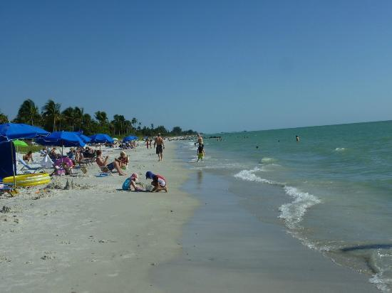 Plage devant l 39 h tel photo de the naples beach hotel for Club piscine ste agathe des monts