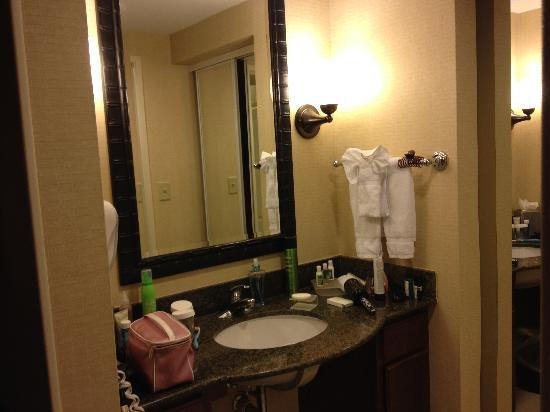 Homewood Suites Tampa Brandon: Bathroom vanity
