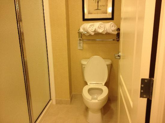 Homewood Suites Tampa Brandon: Bathroom