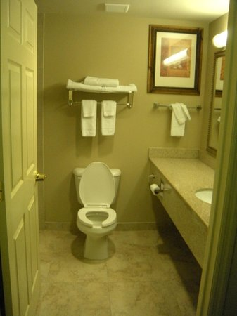 Country Inn & Suites Port Charlotte: Bathroom