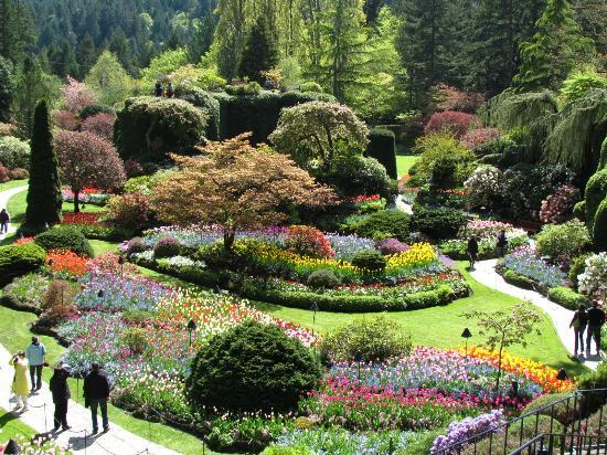Bountiful And Delicious High Tea Picture Of Butchart Gardens Central Saanich Tripadvisor