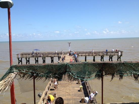 View from upper deck picture of galveston 39 s 61st street for Galveston fishing pier report