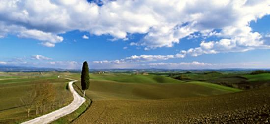 Tuscany Ex Day Tours