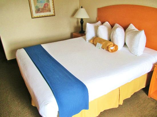 BEST WESTERN PLUS Anaheim Orange County Hotel: Comfortable Bed