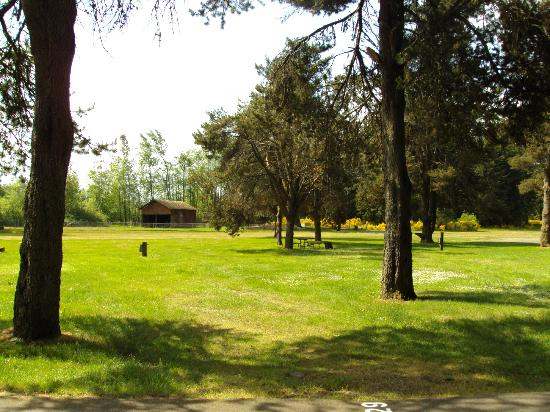 American Heritage Campground: grassy area, little farm in the back with a rooster and some goats