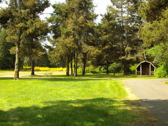 American Heritage Campground: Beautiful grassy area with cabin available for rental