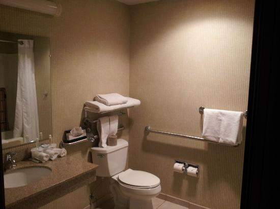 Holiday Inn Express Hotel & Suites Hill City: Bathroom