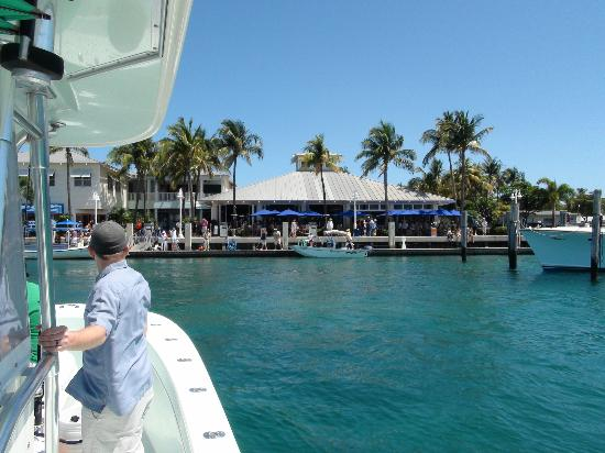 Palm beach fishing charter picture of west palm beach for Fishing charters west palm beach fl