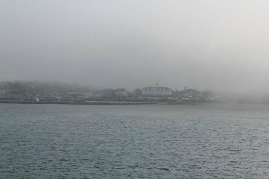 National Hotel from across the harbor on a foggy day (big white hotel in the middle of the shot)