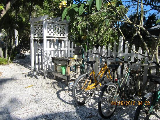 Seahorse Cottages: Bikes