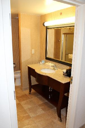 Hampton Inn & Suites Huntersville: Washroom