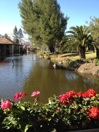 Westlake Village Inn: View from lakeside room