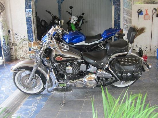 Princess of Coron: the hog and the suzuki