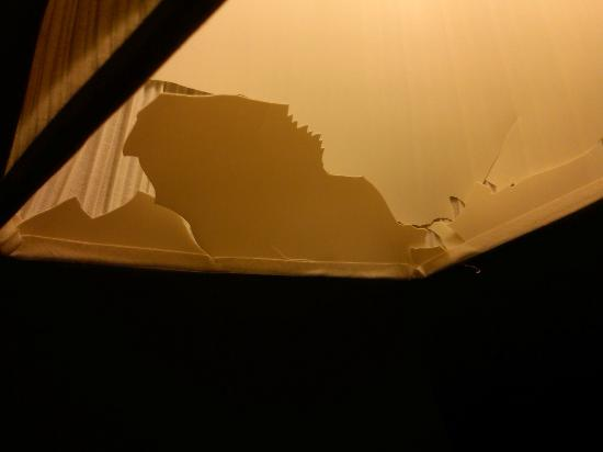 Days Inn Bath / Hammondsport: Looking inside a lampshade that is crumbling apart.