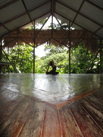 Manu Yoga Village: pigeon pose
