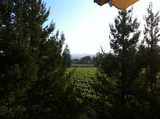 Hilton Garden Inn Sonoma County Airport: View from balcony of room 341