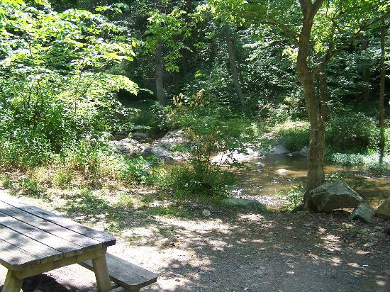 Gooney Creek Campground: Close the River!