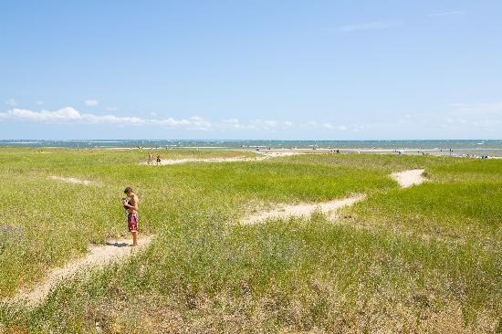 Photo of Sandcastle Resort Provincetown