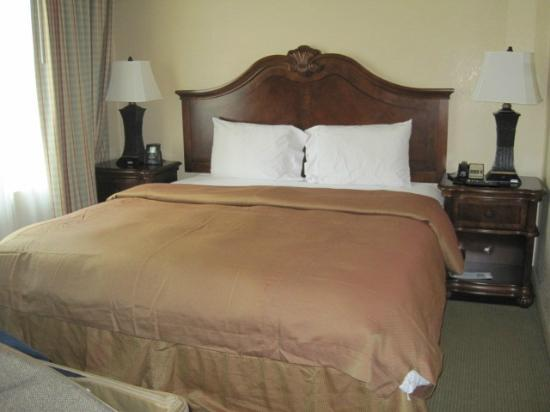 Homewood Suites by Hilton San Diego/Del Mar: Small but nicely appointed king-size bedroom
