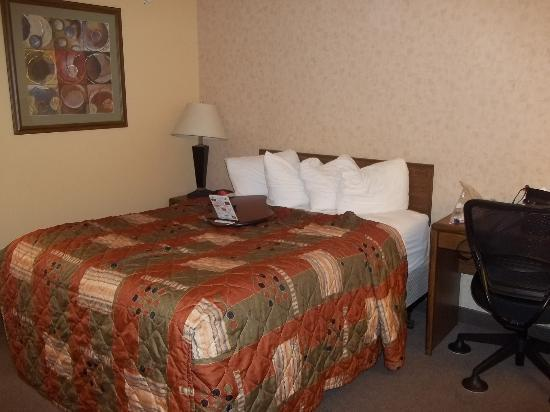 Great Falls TownHouse Inn: Comfy bed