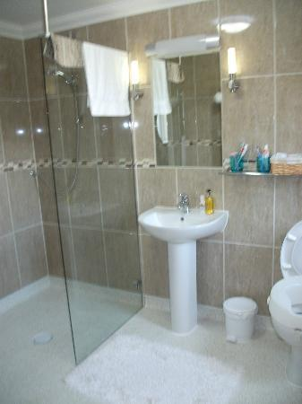 walk in shower wet room picture of lovesgrove country guest house pembroke dock tripadvisor. Black Bedroom Furniture Sets. Home Design Ideas