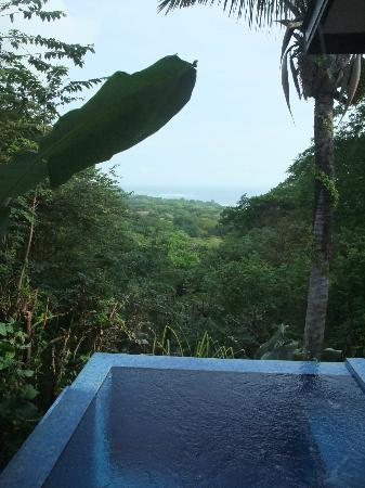 Casa Chameleon: The view from our room