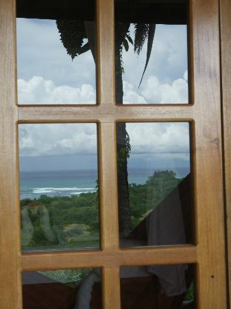 Casa Chameleon: The view from our room reflected on the windows