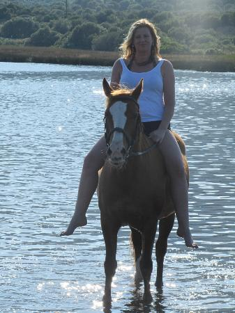 Li Tauli: Riding (swimming with horses) at Golden Spur