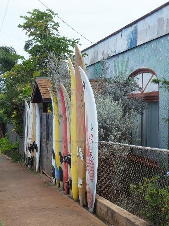 Rainbow Surf Hostel: Street side